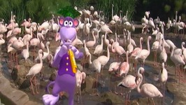 Baby Flamingos Song - Learn Animals Songs
