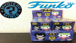 Funko Mystery Minis Batman Plushie Case Review