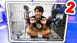 Escape The Dog Cage 2