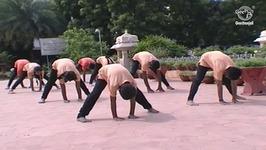 Yoga Exercise For Beginners In Tamil - Forward Bending