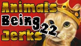 Thug Life - Animals Being Jerks -22