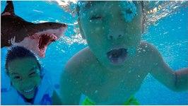 SHARKS IN THE BATHROOM!! (odysea aquarium)