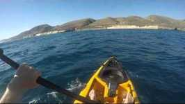 Kayak Fisherman Battles Hammerhead Shark