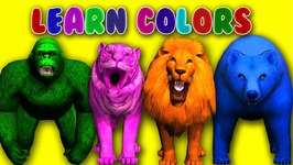 Learn Colors with Animals for Children Toddlers Finger Family Rhymes for Kids Learning Video