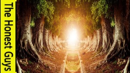 The Halls of the Elven King - LOTR Guided Meditation