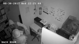 Trio of Thieves Steal Cleaning Robots From Adelaide Pool Shop