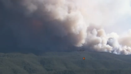 Blaze Burns Through Bushland at Wollemi National Park