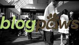 Moment With An Insider - Yvonne DiVita & Tom Collins - BlogPaws Founders Reminisce