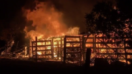 San Jose Firefighters Work to Contain Brush Fire that Destroyed Barn in Almaden Hills