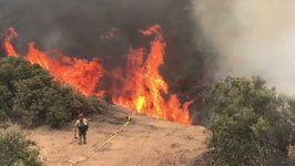 Firefighters Work to Contain California's Whittier Fire
