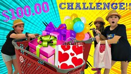 100 Dollar Birthday Shopping Challenge!!