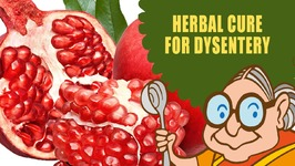 Dysentery Treatment - Natural Ayurvedic Home Remedies - Butter Milk And Pomegranate