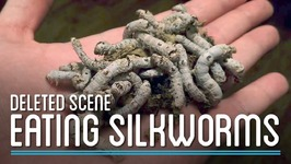 Eating Silkworms  HTME Deleted Scene