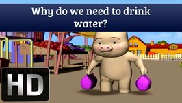 Why Do We Need To Drink Water