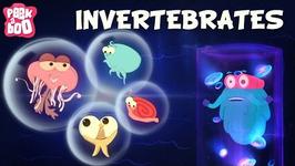 Invertebrates  The Dr. Binocs Show  Learn Videos For Kids