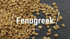 All About Fenugreek