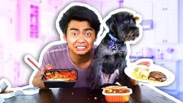 DOG FOOD VS HUMAN FOOD
