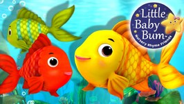 Numbers Song - Counting Fish - Nursery Rhymes - Original Song