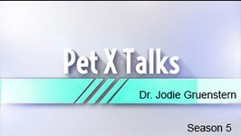 Dr. Jodie Gruenstern - Pet X Talk - The Pet Nutritional Ladder - Healthy Nutrition For Pets