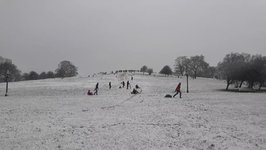 Londoners Go Sledding on Primrose Hill as Amber Snow Warning Continues