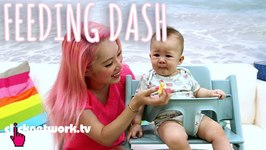 Feeding Dash - Xiaxue'S Guide To Life: Ep146