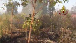 Italian Firefighters Tackle Sicilian Blaze