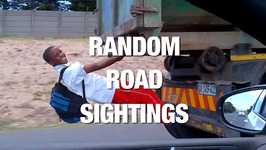 These Drivers Have Witnessed the Most Random Sightings on the Road