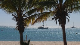 Shark Bay and Monkey Mia - Motorcycle roadtrip Australia ep28