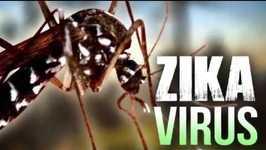 Babymoon Suggestions That Avoid Zika 2018 Caribbean   East Coast