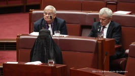 Pauline Hanson Under Fire Over Burka Senate Stunt