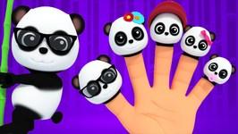 Finger Family - Pandas Baby Bao Panda - Kids Songs Bao Panda - Cartoons For Children
