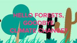 Newly Discovered Forests Could Prevent Climate Change