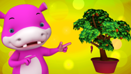 There's a Tree called a Salad Tree - Fun Facts for Kids