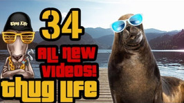 Thug Life 2017 - All New Videos - 34
