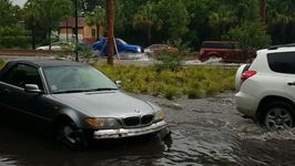 Cars in Charleston Swamped as Flash Floods Fill Streets