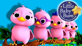 Five Little Birds - Nursery Rhymes - Original Song based on 5 Little Ducks
