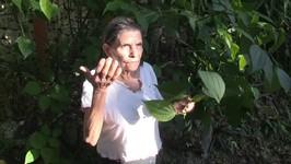 Guatemalan Medicine Women - Medicinal Plants Pt 1