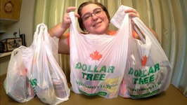 Dollar Tree Food Haul By Victoria Paikin