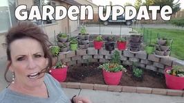 Garden Catch Up And Chicken Update