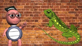 How Do Lizards Climb Walls - What Makes Lizards Stick To The Wall When They Are Crawling - For Kids