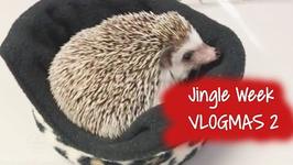 Jingle Week 2016 Vlogmas 2 - Mrpointdexter Goes To Work, Ice Skating And Holiday Decor