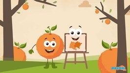 What Came First - Orange The Colour Or Orange The Fruit? Curious Questions And Answers