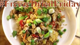 Freeze Dried Friday House Fried Rice