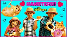Hamsters for Kids Meet My Pet Hamster