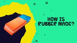 Interesting Fact About Trees - How Is Rubber Made