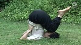 Yoga Exercise For Back Pain - Janu Sirasa Sarvanaga Asana