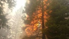 Firefighters Battle Minerva Fire in Northern California