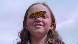 The 11-Year-Old Insect Collector With 1400 Bugs - Truly