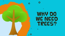 Why Do We Need Trees - Facts About Trees For Kids