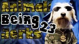 Thug Life - Animals Being Jerks - 23